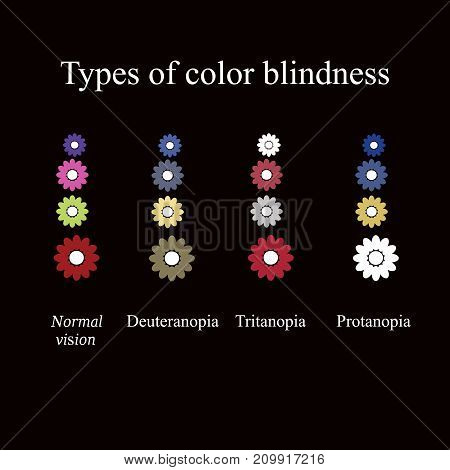Types of color blindness. Eye color perception. Vector illustration on a black background.