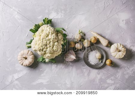 Variety of white vegetables raw organic cauliflower, pumpkins, garlic, parsnip and radish with plate of sea salt over gray texture background. Top view with space. Healthy eating concept. Toned image