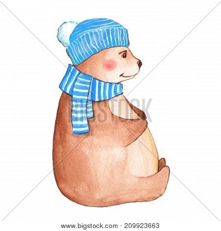 Bear in blue scarf and hat. Watercolor illustration