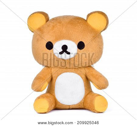 brown teddy bear isoalted on white background