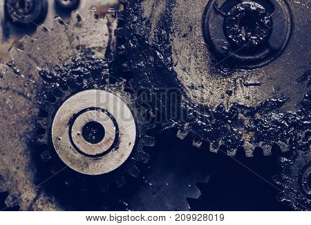 Lubricated gearwheels as a machinery details. Macro photo