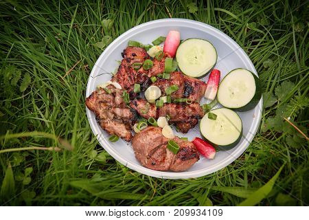 skewers on a plastic plate with vegetables