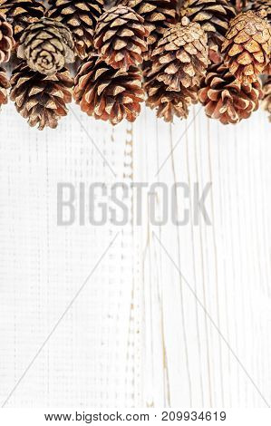 Cones on a white background. Place for the inscription. Concept Happy Christmas New Year holiday winter.