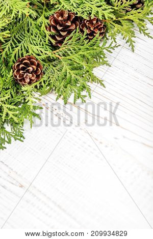 Christmas tree and cones on a wooden background. Place for text. Concept Happy Christmas New Year holiday winter.