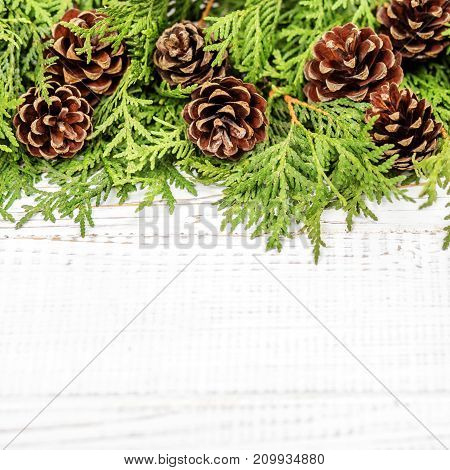 Christmas tree and cones on a wooden white background. Place for text. Concept Happy Christmas New Year holiday winter.
