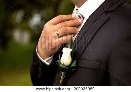 The Groom In A Suit, Corrects A Tie With His Hand.