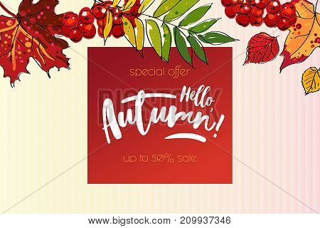Hello autumn sale template with colorful leafs and berries. Hand drawn lettering.