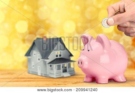 Pink bank piggy white money wealth financial