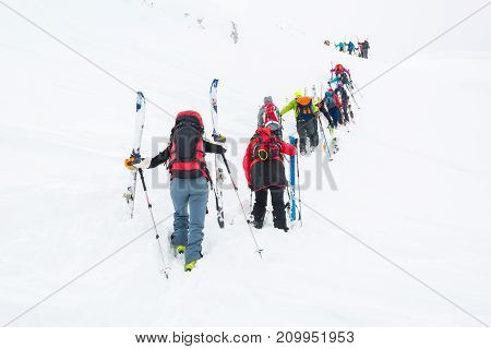 Group of cross-country skiers ascending a steep slope. Line of people in winter fairytale.