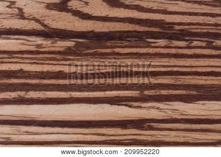 Zebrano texture, Wood grain background. Hi res photo