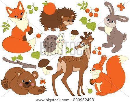 Vector set of cute wild animals in the forest. Set includes fox, deer, bear, hedgehog, squirrel, snail and rabbit. Vector woodland animals. Forest animals vector illustration