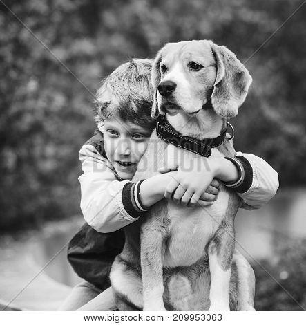 Two best freinds portrait - little boy hugs beagle dog