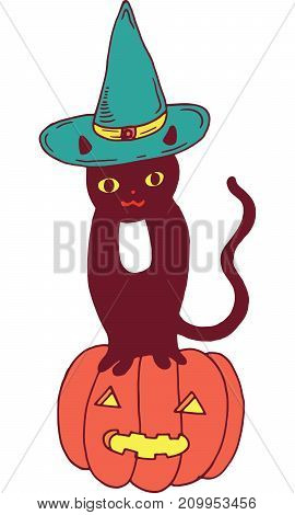 Black cat with hat and pumpkin. Halloween colorful illustration.