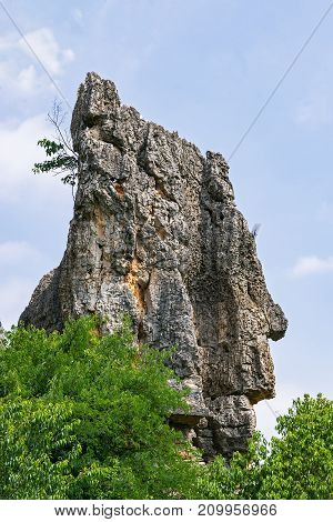 Head shape in Naigu Shilin limestone pinnacles Stone forest, Yunnan Province - China. The Stone Forest or Shilin is a UNESCO World Heritage Sites near Kunming