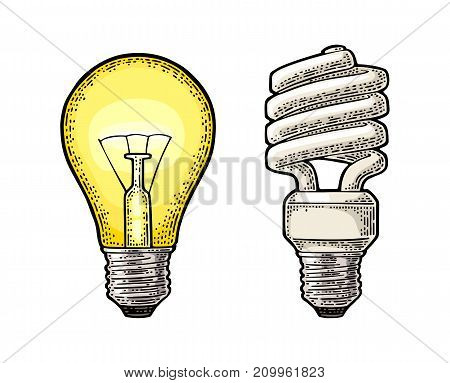 Energy saving spiral lamp and glowing light incandescent bulb. Vector vintage color engraving illustration on white background