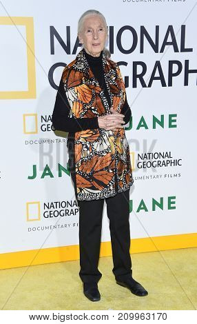 LOS ANGELES - OCT 09:  Jane Goodall arrives for the 'Jane' Los Angeles Premiere on October  9, 2017 in Hollywood, CA