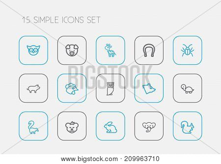 Set Of 15 Editable Zoo Outline Icons. Includes Symbols Such As Beetle, Polar, Cockerel And More