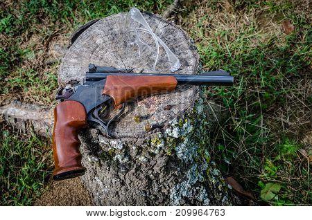 Gun, firearm, 22 barrel single shot for hunting or target shooting. Fun recreational sport hobby equipment.