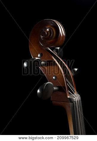 Cello Scroll set against a black Backdrop