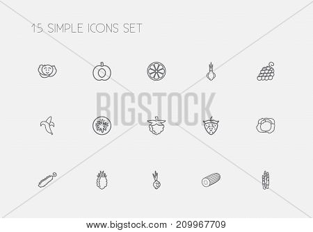 Set Of 15 Editable Vegetable Outline Icons. Includes Symbols Such As Asparagus, Raspberry, Blackberry And More