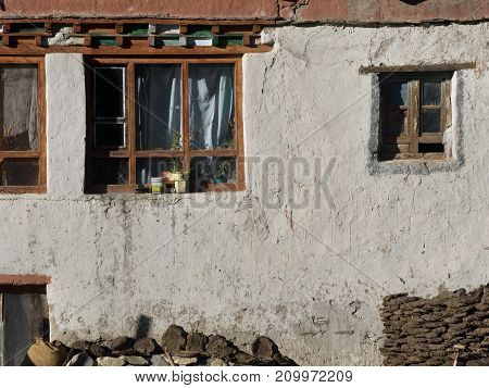 Old wooden windows on white clay wall background in the windows of white curtains at the base of the wall are stacked firewood and cow cakes village life.