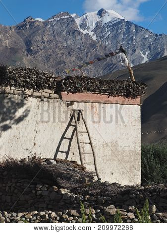 Rustic Tibetan house: a white wall a brush on the roof colored Buddhist flags with prayers a stone fence summer in the Himalayas.