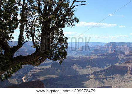 Arizona Grand Canyon south rim scenic view