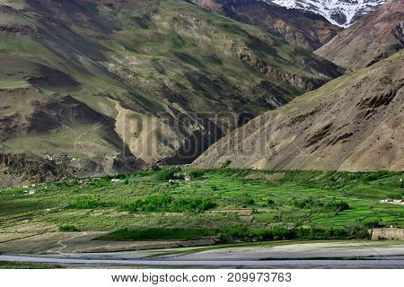 Green fields and trees near a mountain village located near a high cliff on top of the peak is a white glacier the Himalayas Northern India.