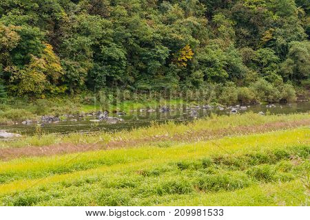 River Flowing Through Countryside