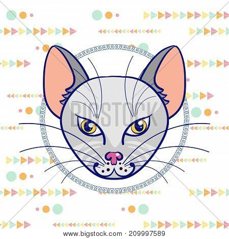Hand drawing a portrait of a gray cat in a circle on a white background with a pattern of multi-colored triangles and circles. Vector illustration