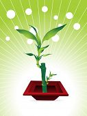 little bamboo tree with nice red pot, vector illustration poster