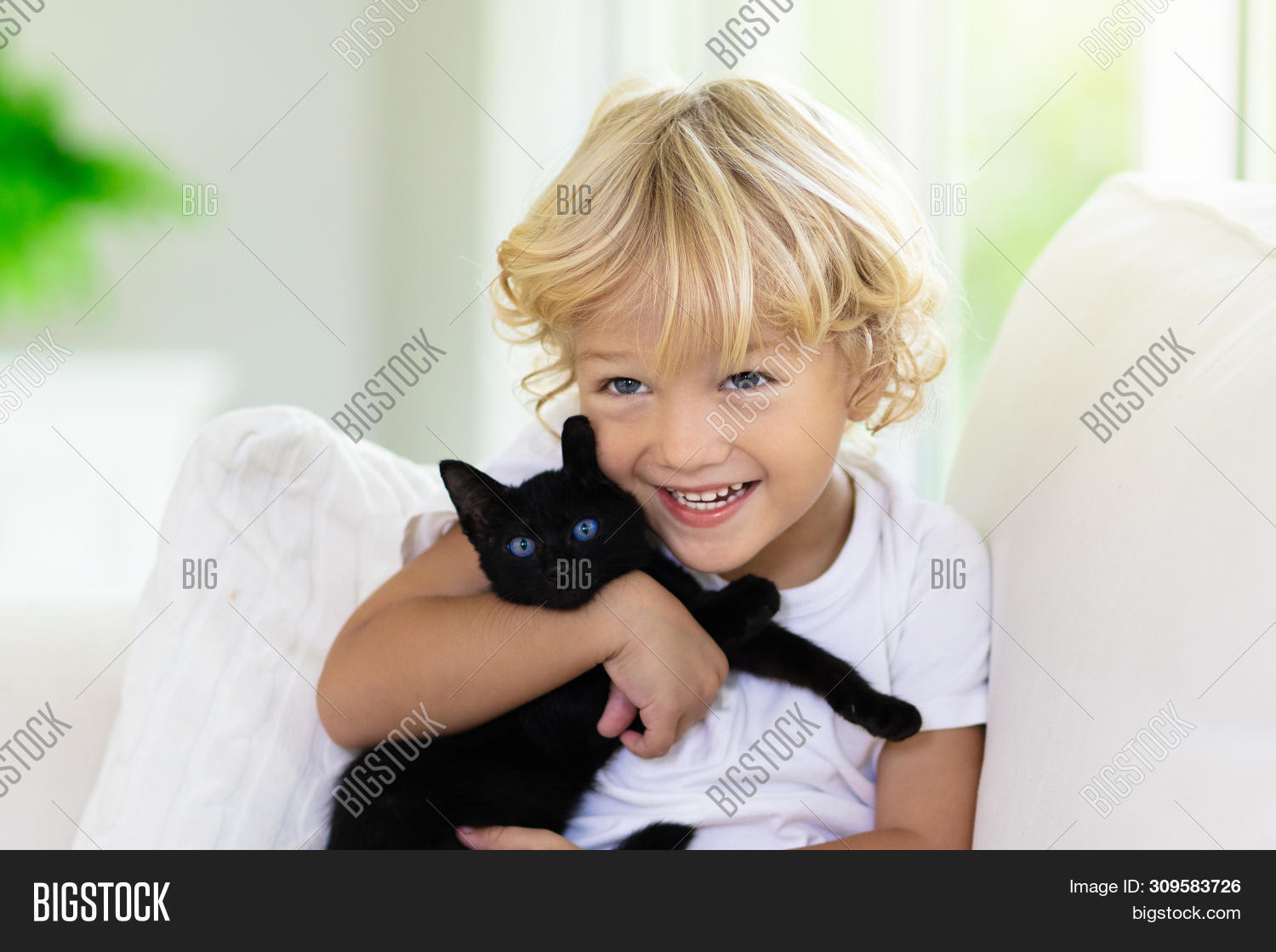 Fabulous Child Playing Baby Cat Image Photo Free Trial Bigstock Dailytribune Chair Design For Home Dailytribuneorg
