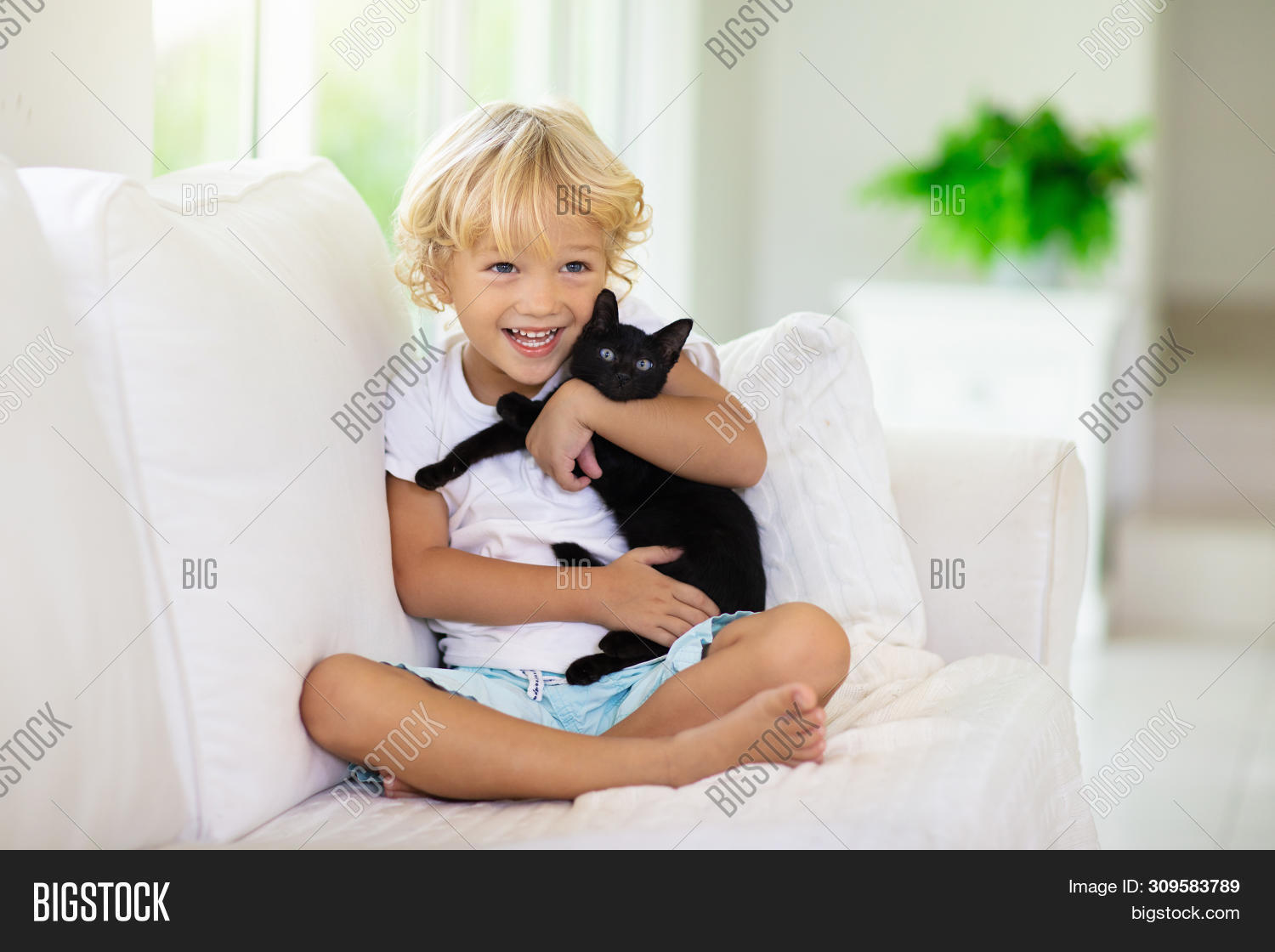Swell Child Playing Baby Cat Image Photo Free Trial Bigstock Dailytribune Chair Design For Home Dailytribuneorg