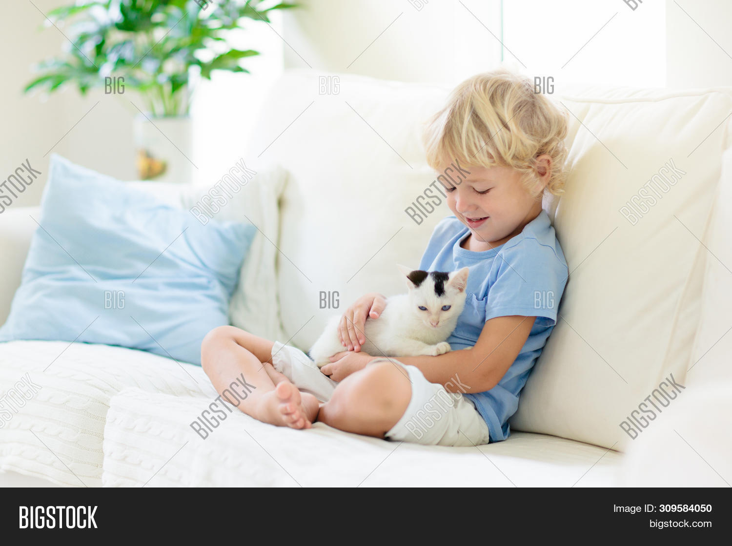 Super Child Playing Baby Cat Image Photo Free Trial Bigstock Dailytribune Chair Design For Home Dailytribuneorg