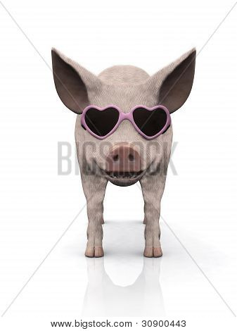A cool smiling piglet wearing pink heart shaped sunglasses. White background. poster