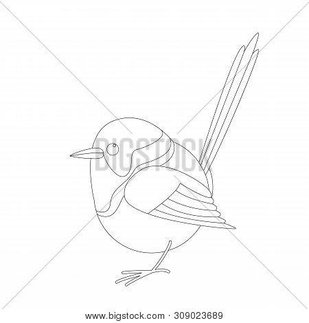 Variegated Fairy Wren Bird,vector Illustration, Lining Draw