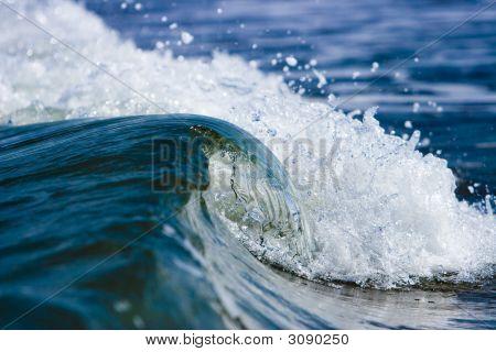 Wild Sea Wave