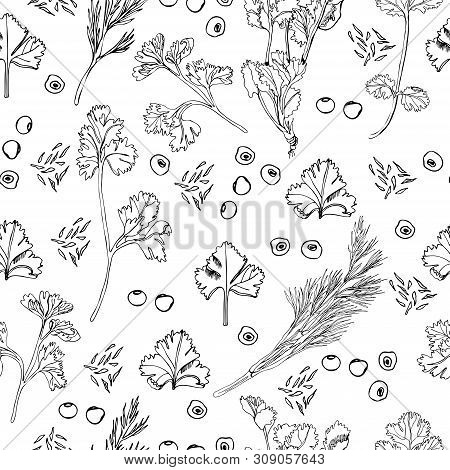 Seamless Pattern Of Different Herbs And Spices. Hand Drawn Ink Sketch Isolated On White Background.