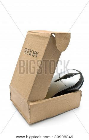 Computer Mouse In Cardboard Box