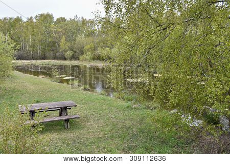 Springtime View With Wooden Furnitures By A Pond In A Swedish Nature Reserve At The Island Oland