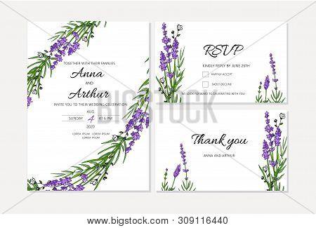 Set Of Lavender Wedding Invitations Set. Doodle Illustrations.