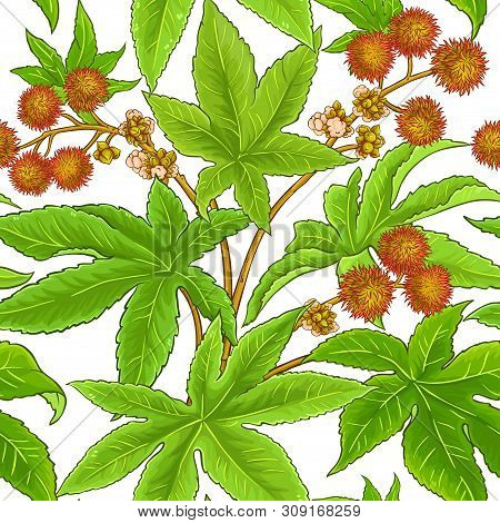Castor Branches Vector Pattern On White Background