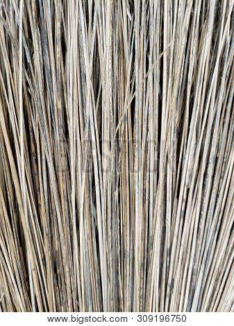 Weathered Broom Natural Background Or Natural Backdrop