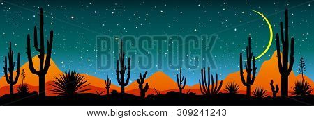 Desert, Cacti, Stars Night. Starry Night Over The Mexican Desert. Silhouettes Of Stones, Cacti And P