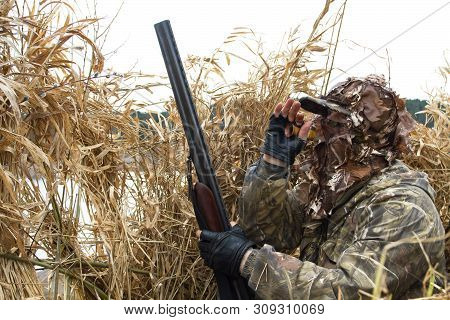 The Hunter Hid In The Reeds And Lures The Waterfowler With Duck Call