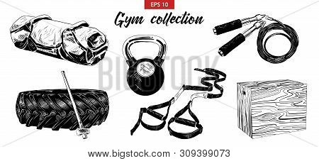 Vector Engraved Style Illustrations For Posters, Logo, Emblem And Badge. Hand Drawn Sketch Set Of Gy