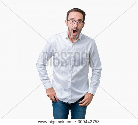 Handsome middle age elegant senior business man wearing glasses over isolated background afraid and shocked with surprise expression, fear and excited face.