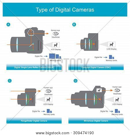 Explain The Working System Of Each Type Digital Cameras. Info Graphic Illustration.