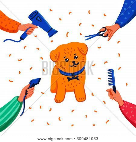 Pet Grooming Concept. Happy Lap-dog And Hands With Comb, Hair Dryer, Scissors And Haircut Clipper On
