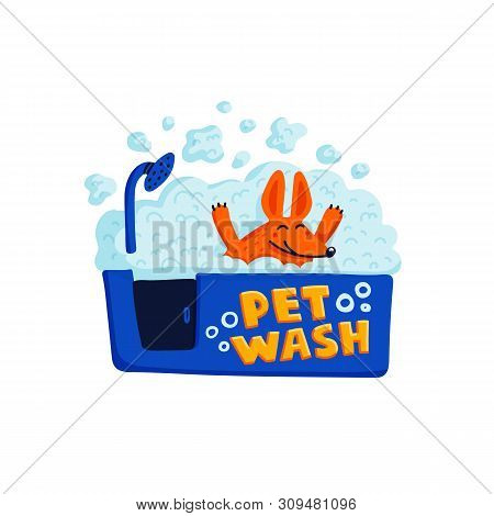 Pet Grooming Concept. Happy Dog Taking A Bath Full Of Soap Foam On White Background. Dog Care, Groom